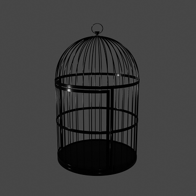 Thumbnail image for Birdcage