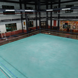 Dead Or Alive 5 - Sweat Gym