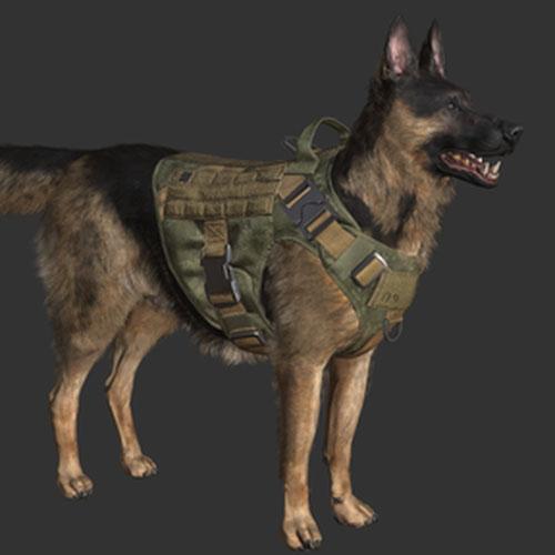 Thumbnail image for Execution Dog Riley (MW)