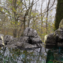 Simple lake Scene