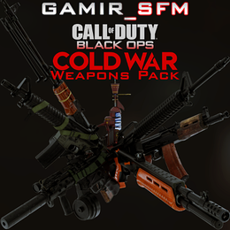 CoD Black Ops Cold War Weapons Pack