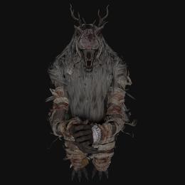 Vicar amelia bloodborne (beast version)