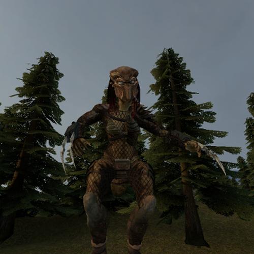 Thumbnail image for Female Predator