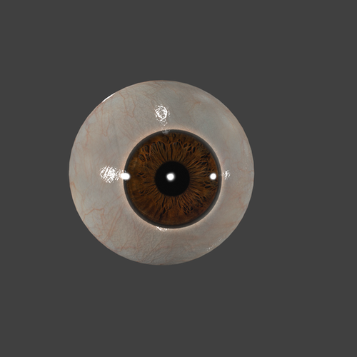 Thumbnail image for Realistic EYE