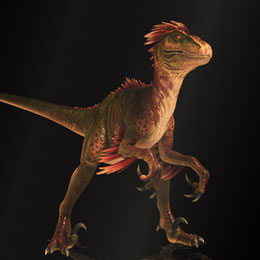 Raptor ( The Ark Survival Evolved )