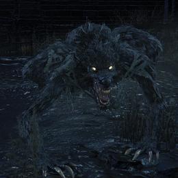 [BLOODBORNE] Scourge Beast
