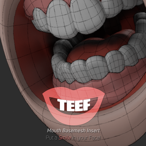 Thumbnail image for TEEF: Mouth Cavity Base Mesh Insert