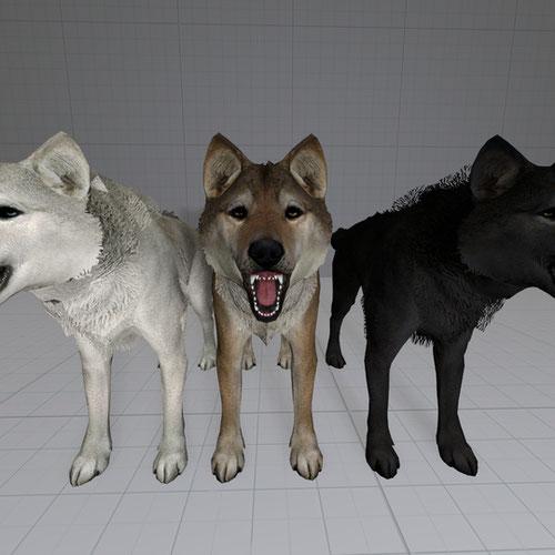 Thumbnail image for True Wolves of Skyrim Port