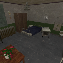 Thumbnail image for Asylum room
