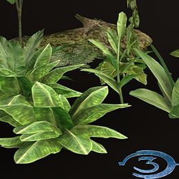 Halo 3: Jungle Foliage