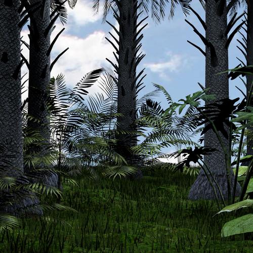 Thumbnail image for jungle