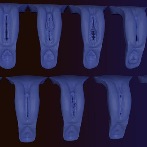 Thumbnail image for Dynamesh Vaginas