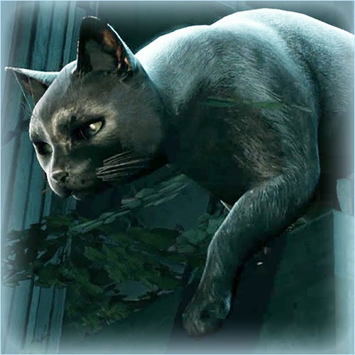 Thumbnail image for Cat [Murdered: Soul Suspect]