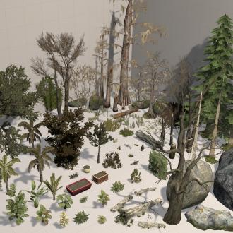 Thumbnail image for Plants & Rocks