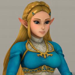 Hyrule Warriors Zelda (BOTW Costume)