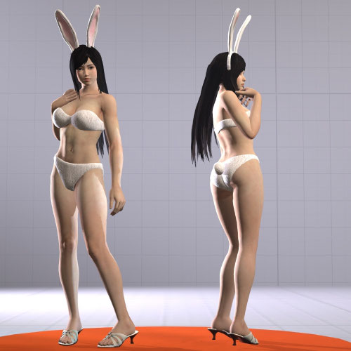 Thumbnail image for Dead Or Alive - Kokoro Bunny Outfit / Nude