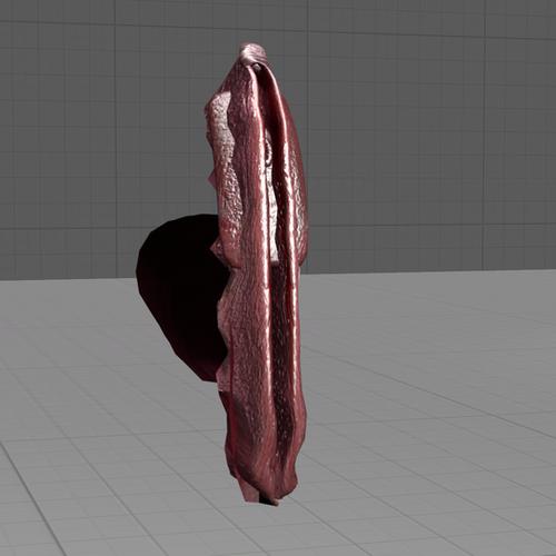 Thumbnail image for Vagina