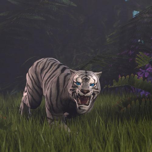 Thumbnail image for White Tiger