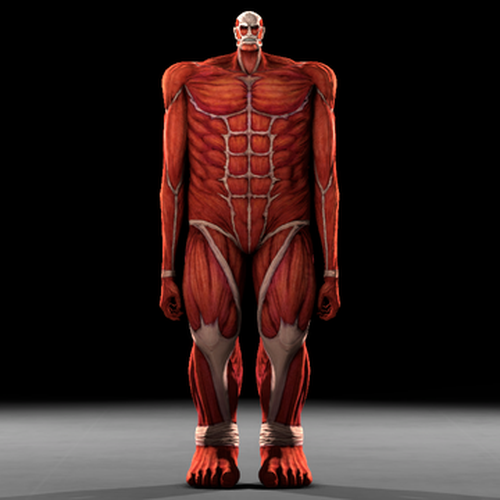 Thumbnail image for Colossal TItan (Aot: Wings of Freedom)