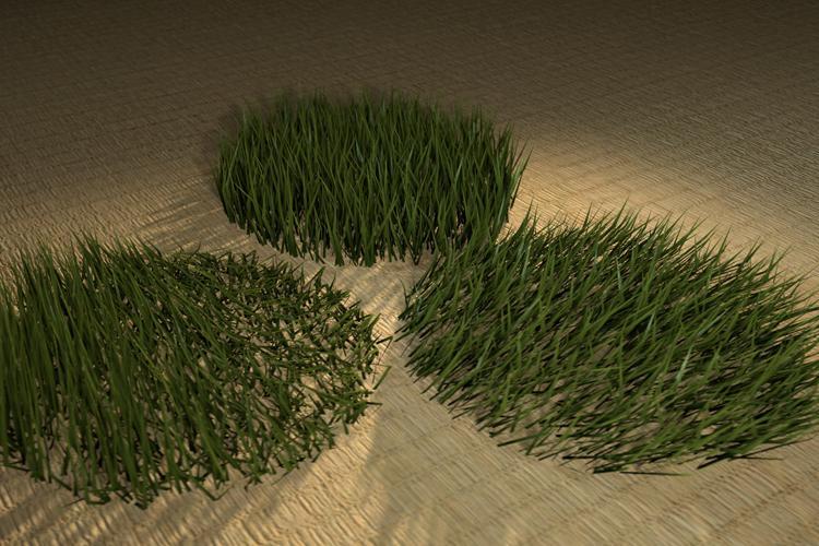 Barbell Grass V1