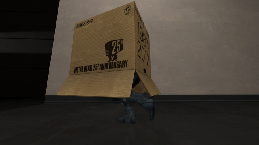 MGS Box