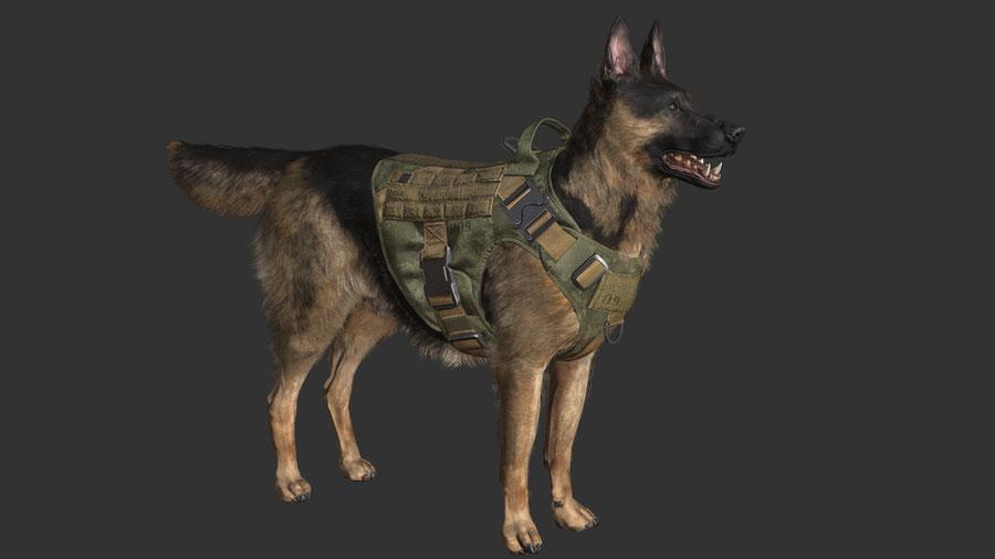 Execution Dog Riley (MW)