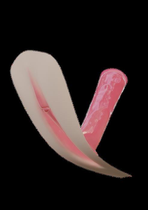 Simple vagina model [Eevee / Cycles]