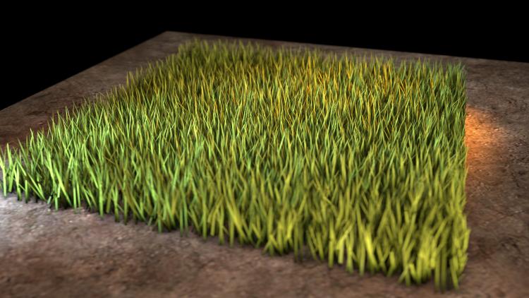Ridiculously High-Polygon Grass