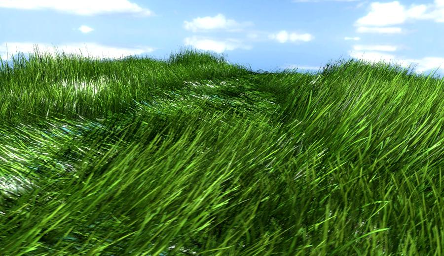 Barbell Grass System V1