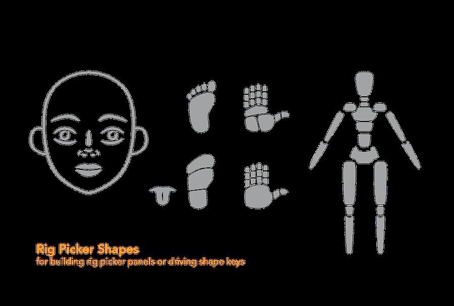Custom Bone Shape Library