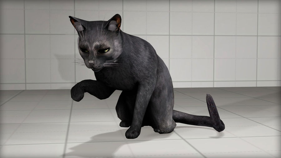 Cat [Murdered: Soul Suspect]