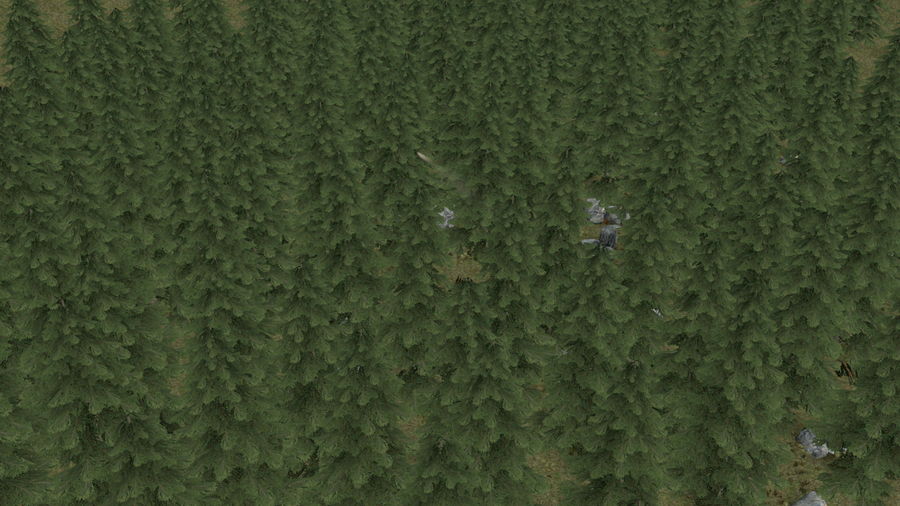Forest Scene - Map