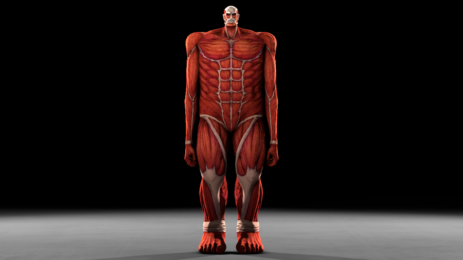 Colossal TItan (Aot: Wings of Freedom)