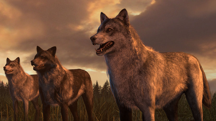 Call of Duty: Ghosts Wolf and Hellhound