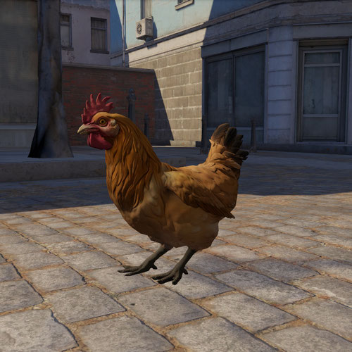Thumbnail image for Chicken